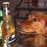 В Британии продают собачье пиво