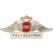 """РОСГОССТРАХ не имеет договорных отношений с туроператором """"Идеальный мир"""""""