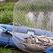 В Башкирии оштрафованы почти 400 рыболовов-браконьеров