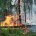 В лесах Башкортостана введен особый противопожарный режим