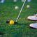 Власти Подмосковья вложат 200 млн рублей в строительство полей для гольфа