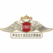 РОСГОССТРАХ готов к приему документов от пострадавших в авиакатастрофе ТУ-154