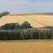 Арбитражный суд Москвы обязал Башкирию предоставлять землю только по результатам торгов