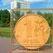 В Европарламенте предлагают исключить рубль из международного финансового оборота