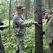 На развитие лесного хозяйства Новосибирской области понадобится 5,7 млрд рублей