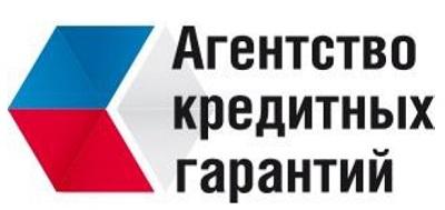 Общественный совет Минэкономразвития России одобрил стратегию развития Национальной гарантийной системы