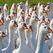 В Уфе уничтожили 15 кг санкционных гусей