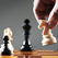 Федерация шахмат