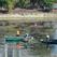 Очистка Солдатского озера в Уфе