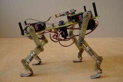 Четвероногий робот установил рекорд скорости