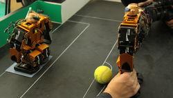 Российские роботы побывали в Новой Голландии