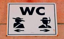 Сегодня на всей планете отмечают Всемирный день туалета