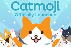 В Интернете появилась кошачья социальная сеть