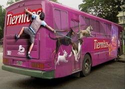 В Уфе реклама на транспорте отвоевывает часть рынка у наружки