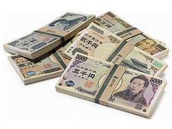 Полиция Японии вернула владельцу крупный клад