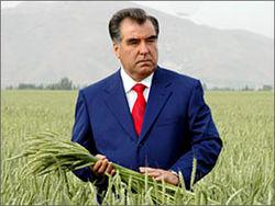 В Таджикистане засох символ вечной независимости страны
