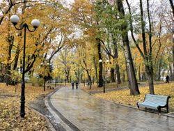 За зданием Конгресс-холла в Уфе появится парк