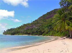 Остров соучредителя Microsoft продан за $8 млн