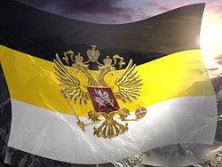 Имперский флаг может стать официальным историческим символом России