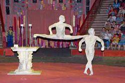 Российские артисты получили высокие награды на Международном фестивале цирка
