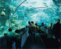 На ВВЦ в Москве построят один из крупнейших в Европе океанариумов