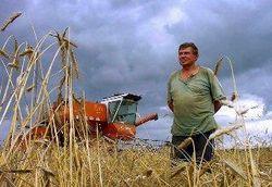 башкортостан, сельское хозяйство
