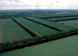 В Башкортостане призвали ускорять посадки