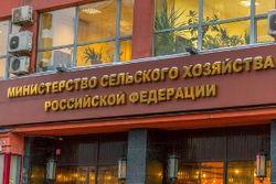 Минсельхоз РФ изменит процесс субсидирования кредитования сельхозпроизводителей