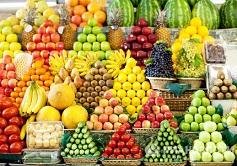 Россия может увеличить импорт продуктов питания из Эквадора