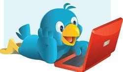 Twitter разрабатывает сервис для совершения интернет-покупок напрямую из твитов