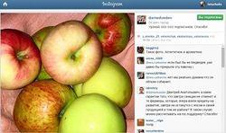 Дмитрий Медведев поблагодарил своих подписчиков в Instagram