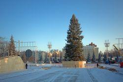 В Уфе установлена центральная Столичная елка