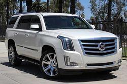 В России будет налажена сборка Cadillac Escalade