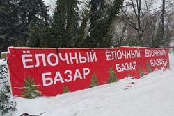 В Башкирии реализовано 92 тысячи новогодних елок