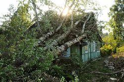 Пострадавшие от урагана в Башкирии получили свыше 40 млн рублей