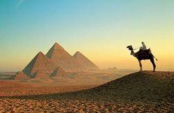 Миграционная служба Египта отменила визовый сбор в $25 для россиян