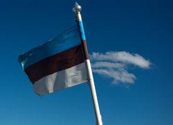 В Эстонии приняли поправки об упрощении условий получения гражданства