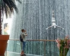 В Дубае заработает суд, рассматривающий правонарушения только туристов