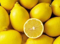Уфимский лимонарий получит статус памятника природы