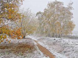 В некоторых районах Башкирии за ночь образовался 12-сантиметровый слой снега