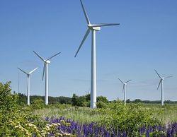 Китайский инвестор намерен построить мощный ветропарк под Калининградом