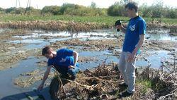 В Башкирии на загрязненном озере зафиксирована массовая гибель рыбы
