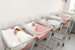 прирост населения башкортостан