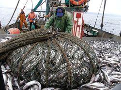 Решение Прокуратуры по делу рыболовной компании ДМП-РМ