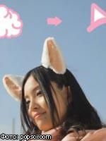 В Японии создают людей-кошек