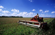 сельхозпроект